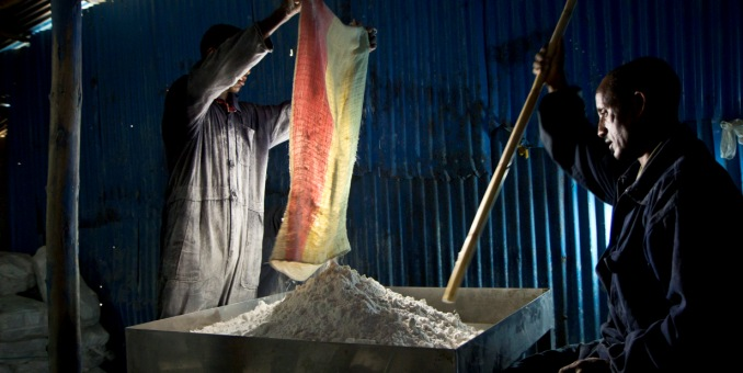 Workers at Shewit Salt Producers Cooperative add iodine to Salt – Mekelle, Tigray, Ethiopia. Photo: Israel Seone