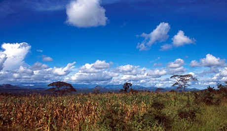 Landscape in Gairo, Tanzania. Photo: DCI